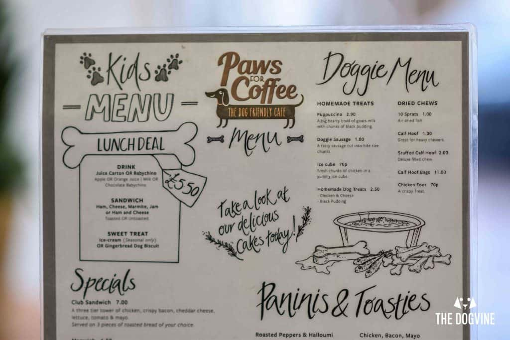 Dog-Friendly Cafe - Paws for Coffee Sheen 4
