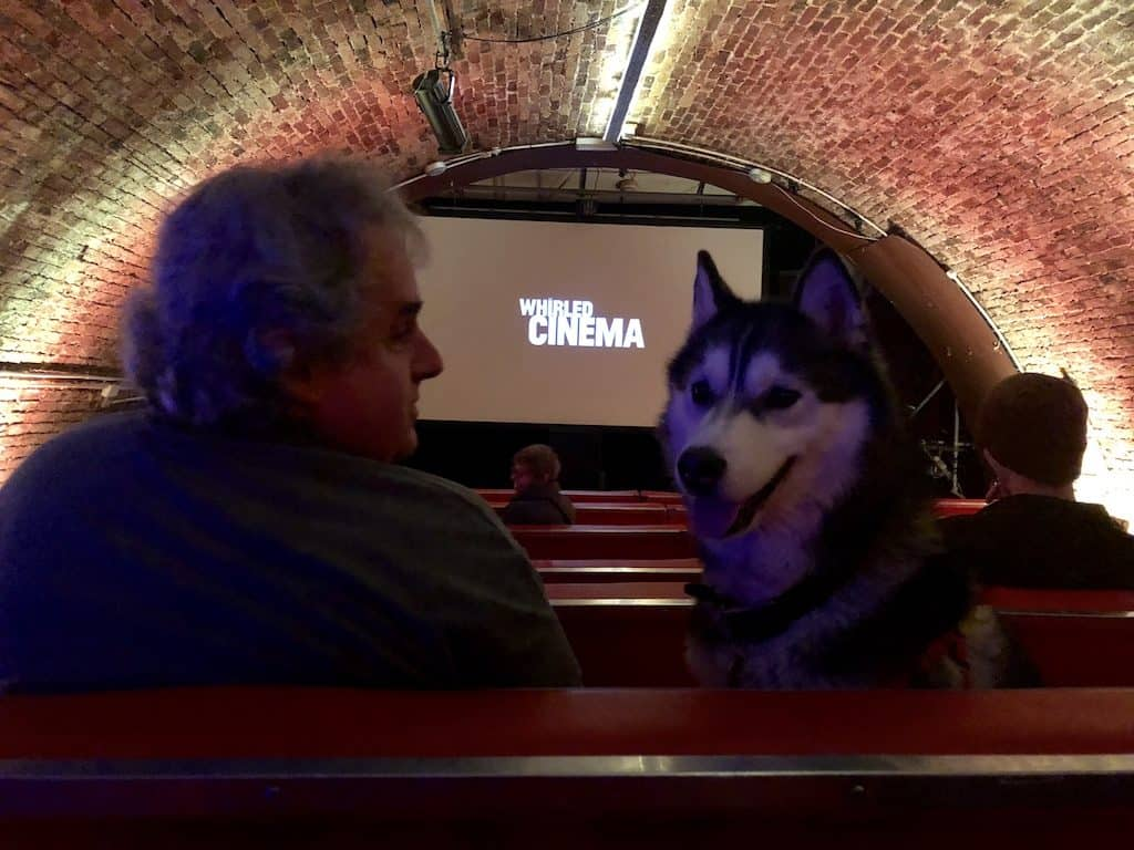 London Gets A New Dog-Friendly Cinema At Whirled Brixton 15
