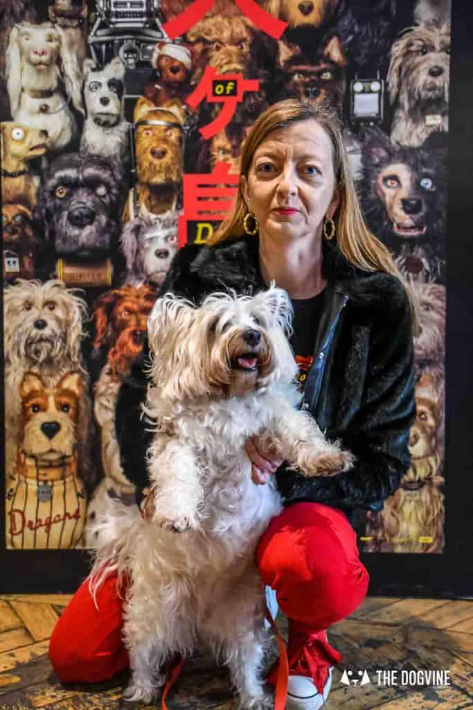 Dog-Friendly Cinema - Picturehouse Clapham - Isle of Dogs 11