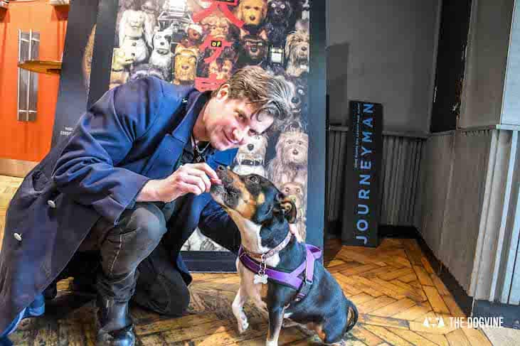 Dog-Friendly Cinema - Picturehouse Clapham - Isle of Dogs 33