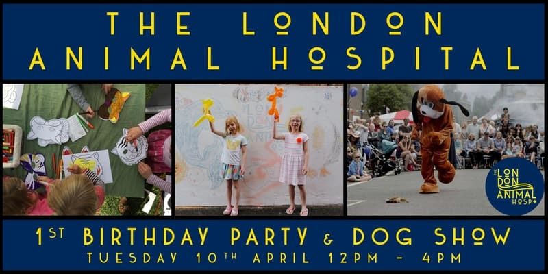 London Dog Events - The London Animal Hospital 1st Birthday Party & Dog Show