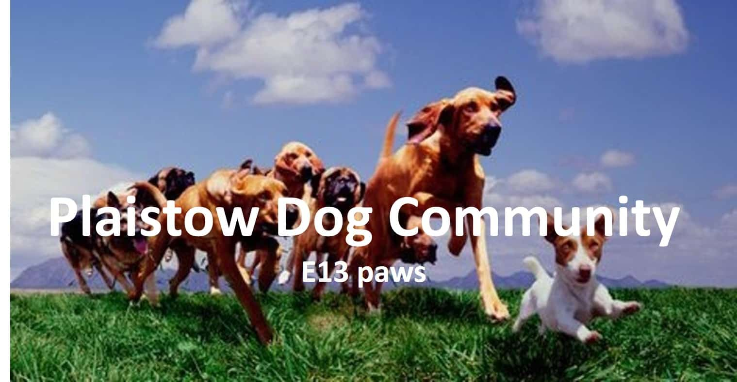London Dog Events - West Ham Park Dog Walk