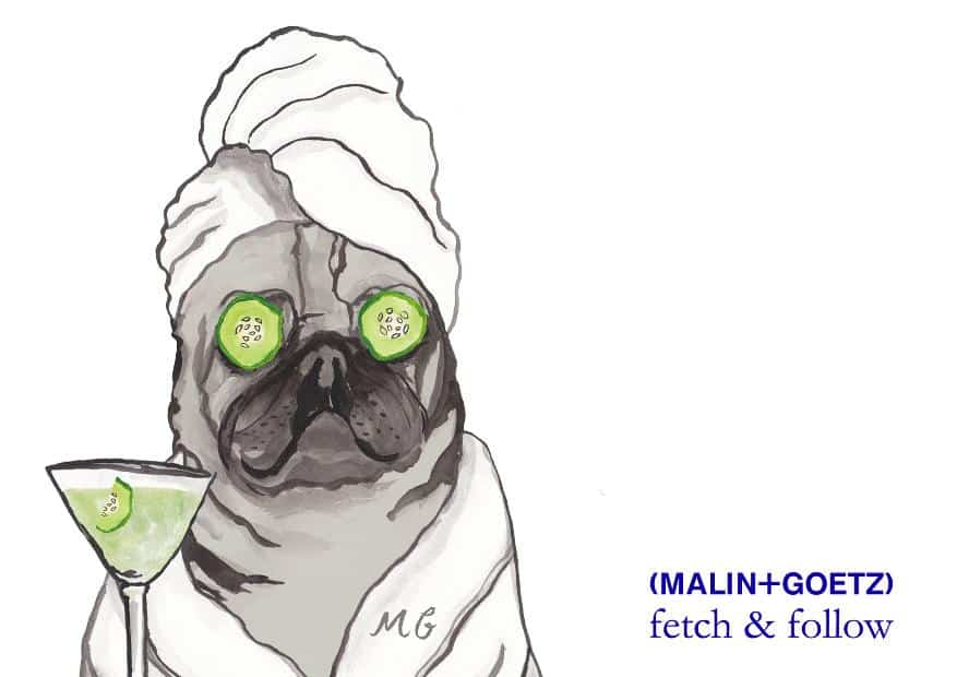 London Dog Events - Hound & Human Revitalising Pamper Party with Fetch & Follow X Malin+Goetz