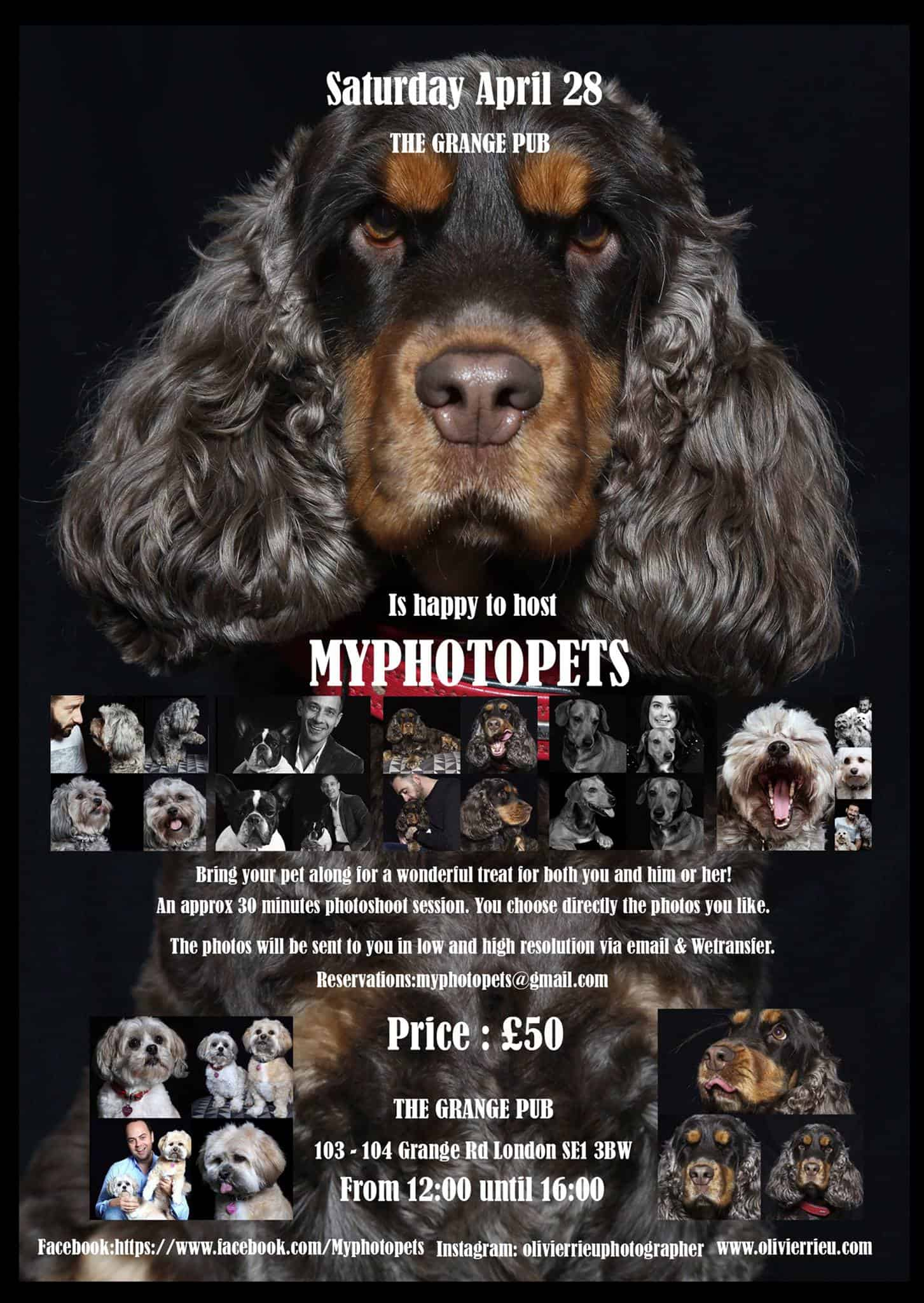 London Dog Events - My PhotoPets Popup Photos