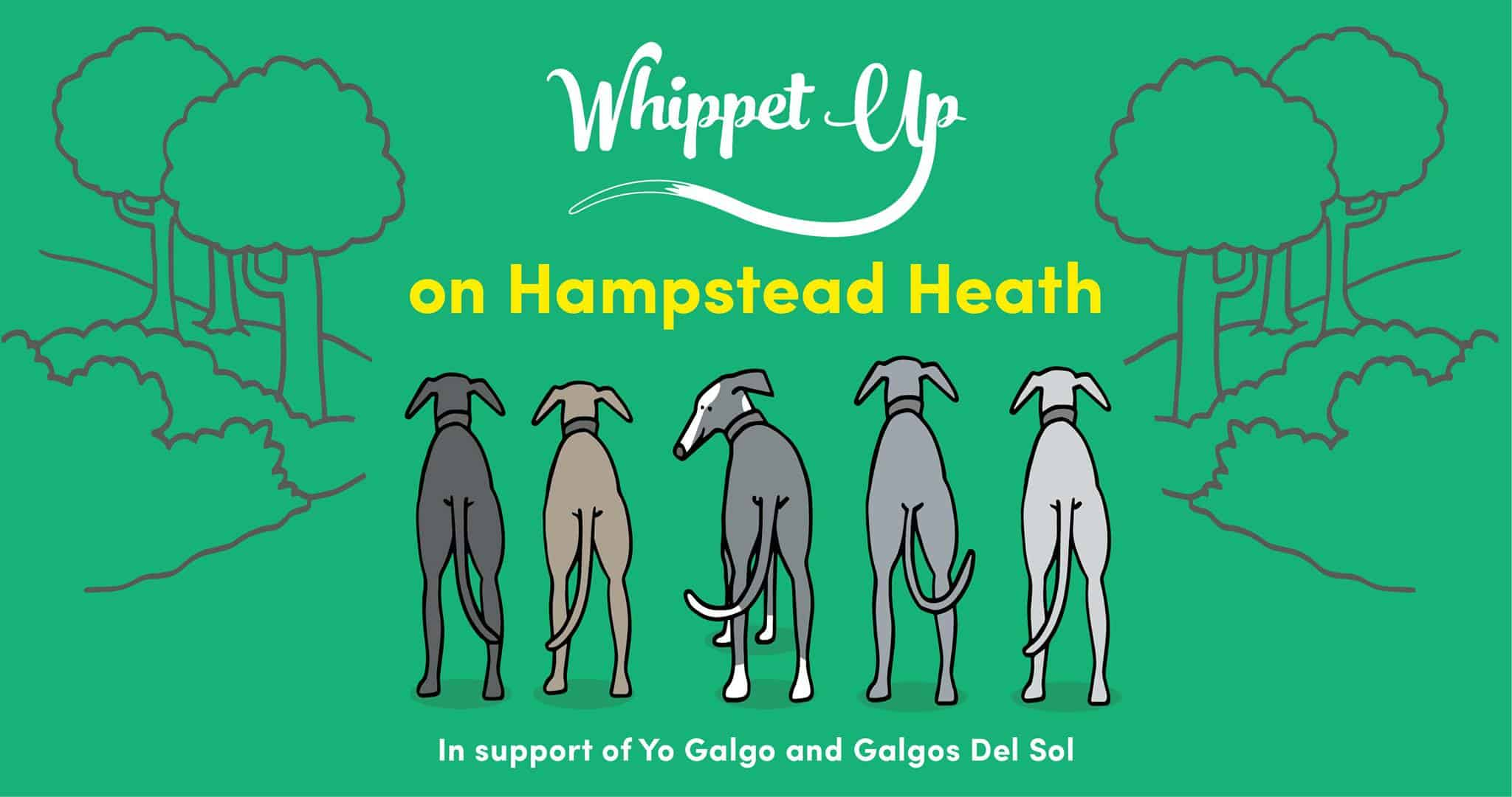 London Dog Events - Whippet Up April