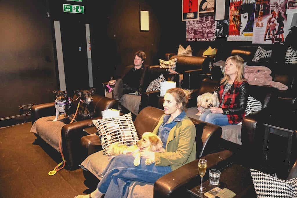 London Dog-Friendly Cinema At The Exhibit Puppy Love Brunch Review 28