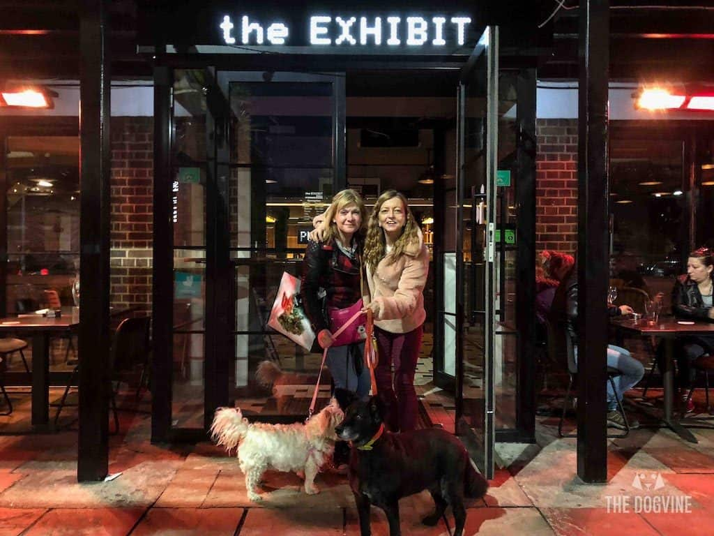 London Dog-Friendly Cinema At The Exhibit Puppy Love Brunch Review 30
