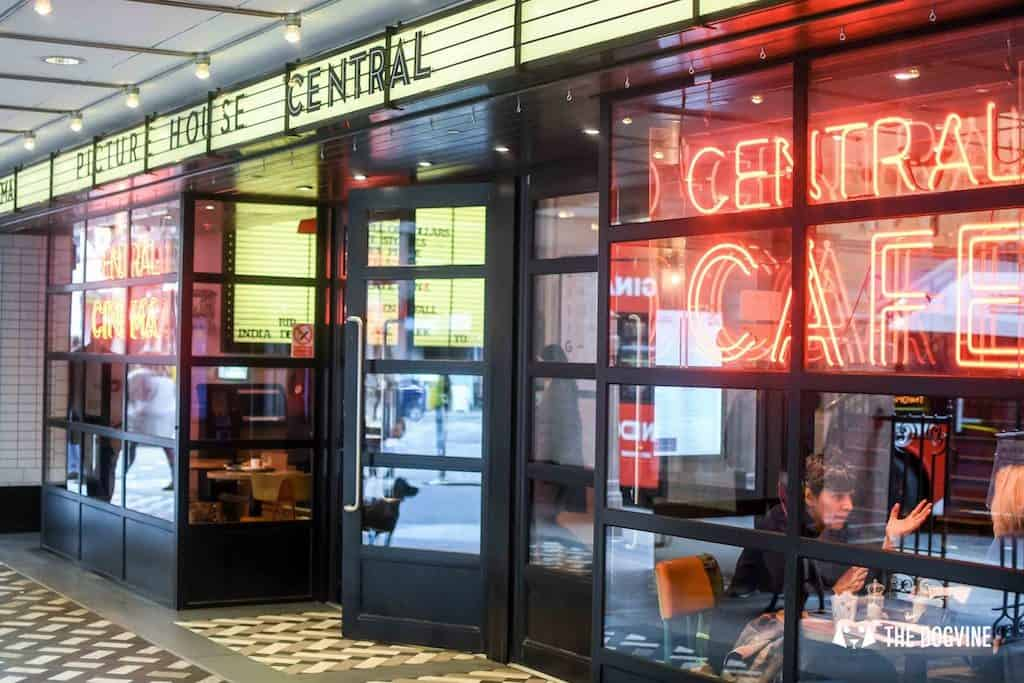 Picturehouse Central Dog-Friendly Cinema Isle of Dogs 90