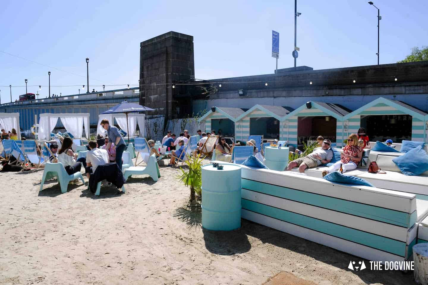 Dog-Friendly Neverland Beach Club - All You Need To Know 20