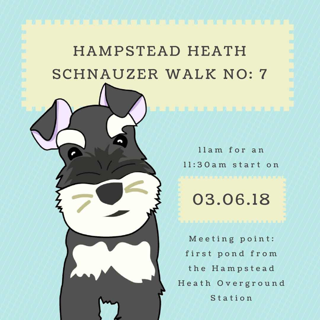 London Dog Events - Hampstead Heath Schnauzer Walk No. 7