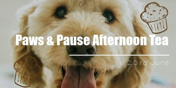 London Dog Events - Paws and Pause Afternoon Tea