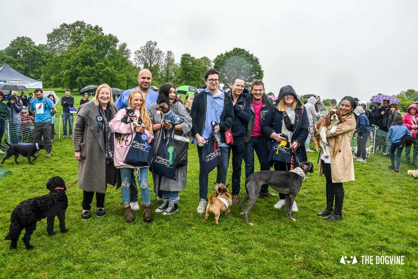 London Dogs At The Great Hampstead Bark Off 2018 115