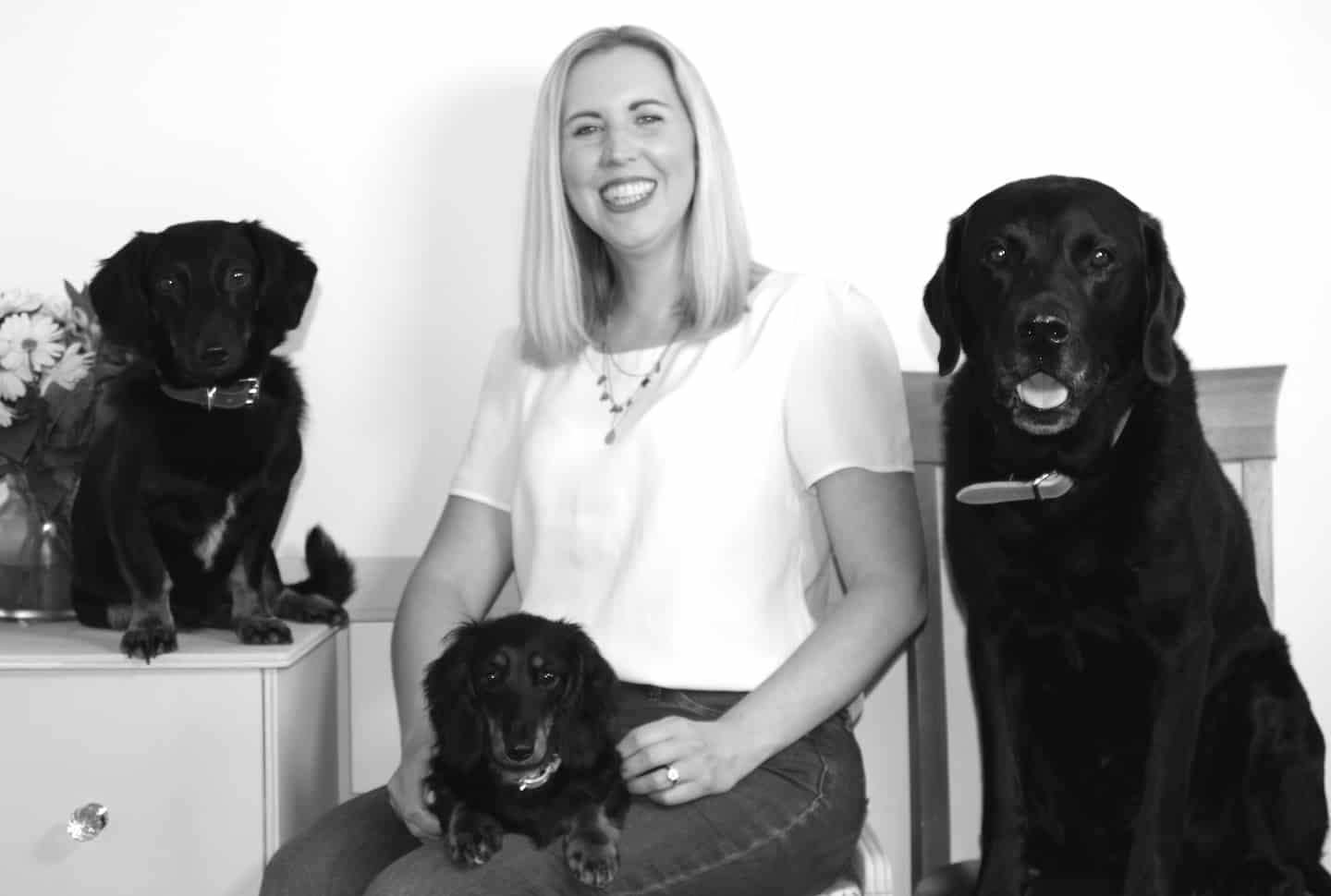 Behind The (Dog) Brand With Crazy Dog Lady 6