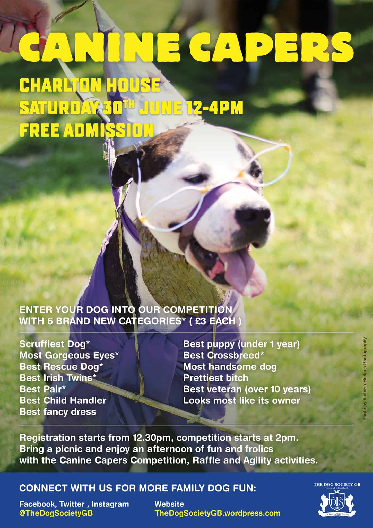 London Dog Events - CANINE CAPERS CHARLTON HOUSE | JUNE 2018