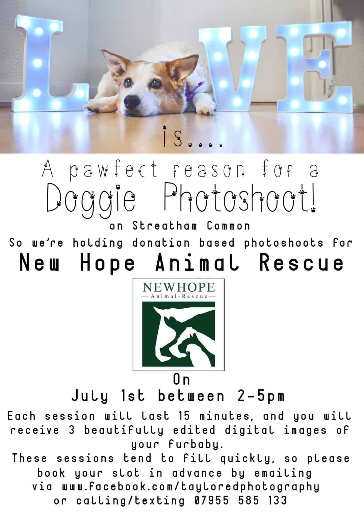 London Dog Events - New Hope Animal Rescue Charity Photoshoot