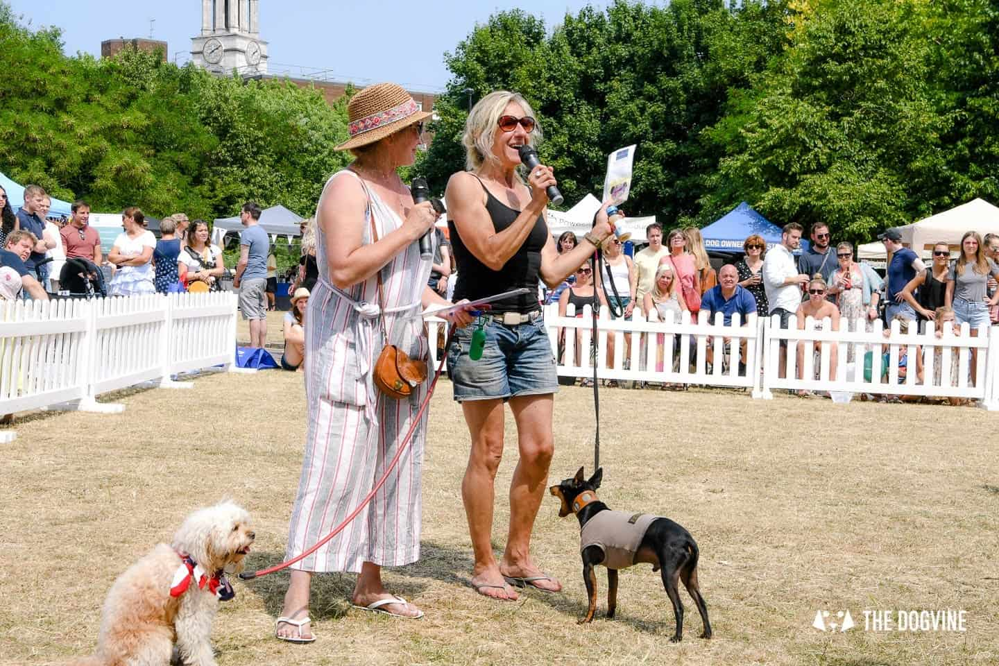 All Things Dog At The Canary Woof Dog Show 2018 13