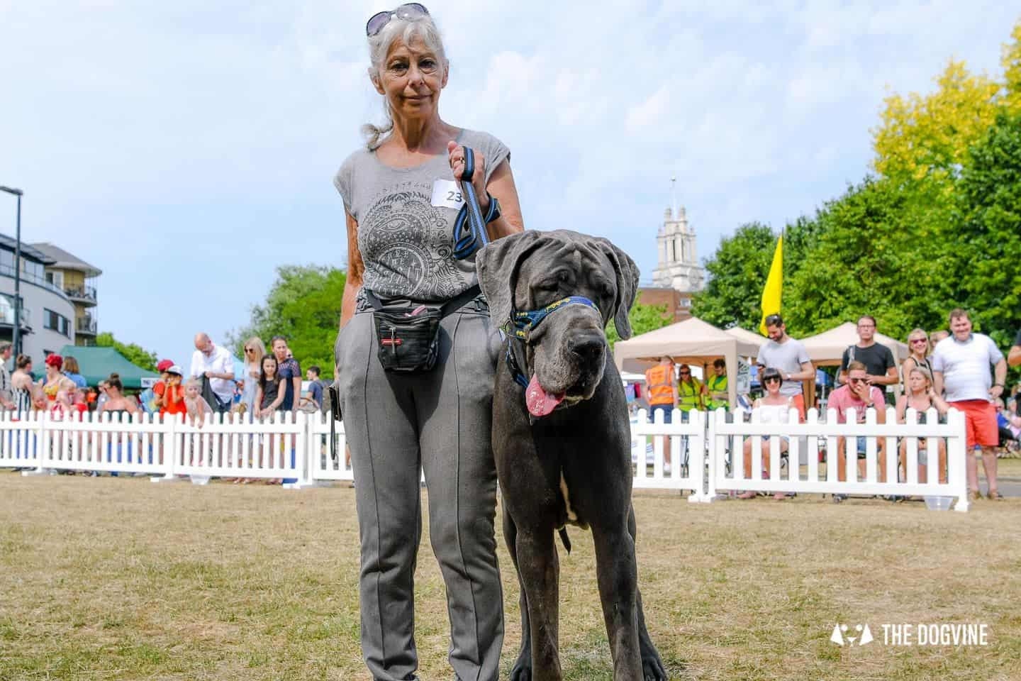 All Things Dog At The Canary Woof Dog Show 2018 33