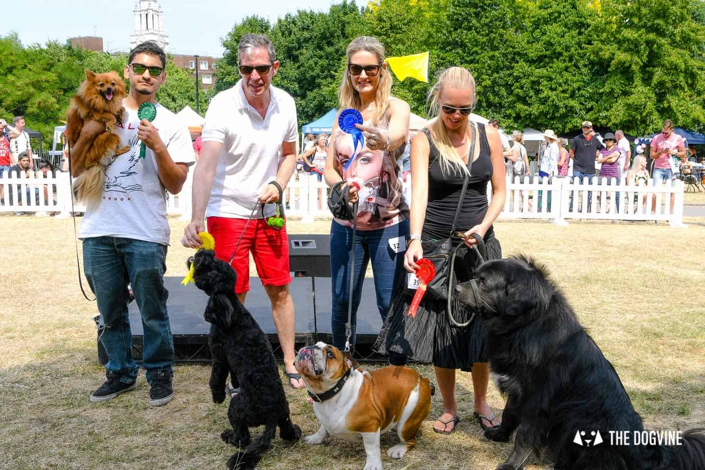All Things Dog At The Canary Woof Dog Show 2018 34
