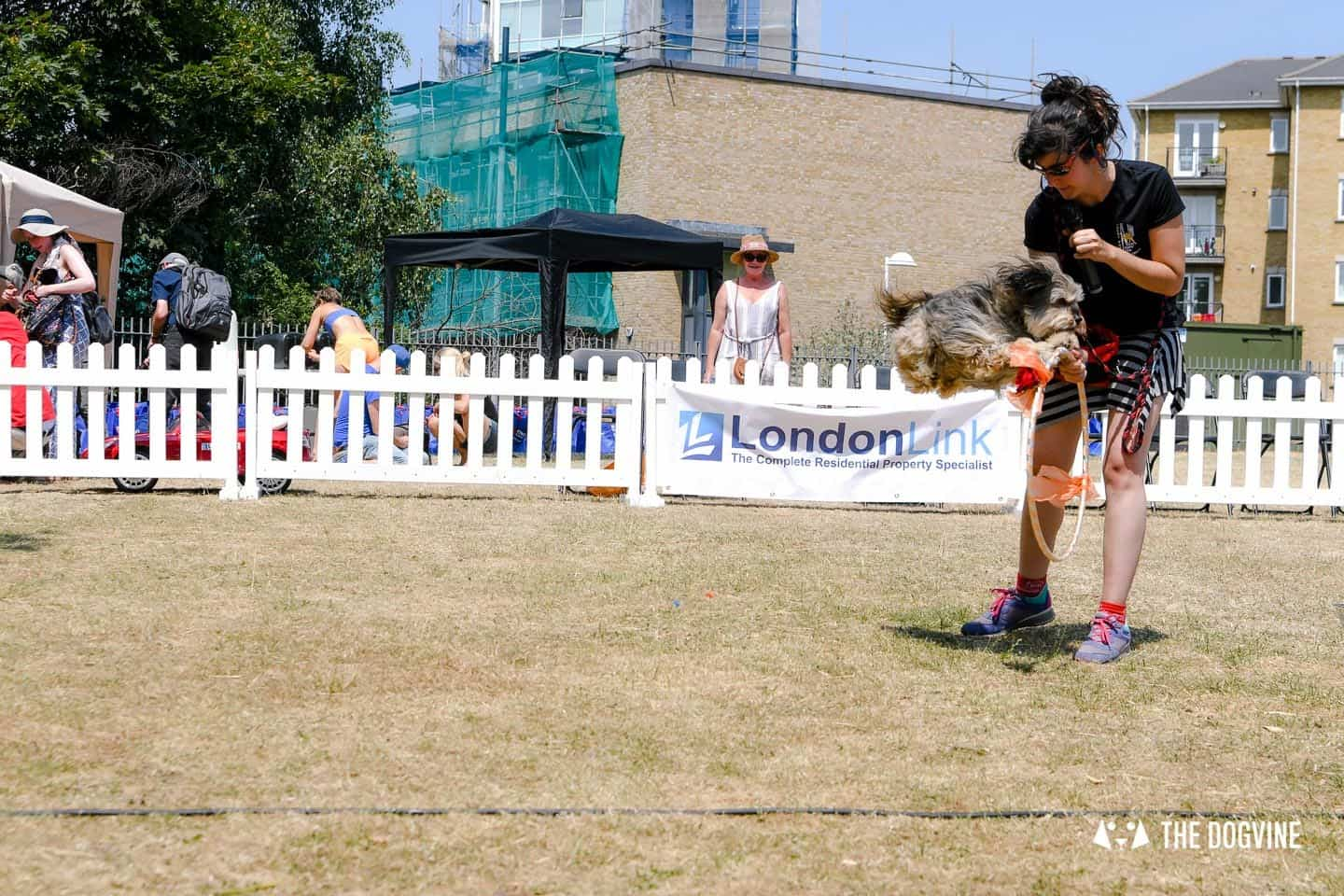 All Things Dog At The Canary Woof Dog Show 2018 4