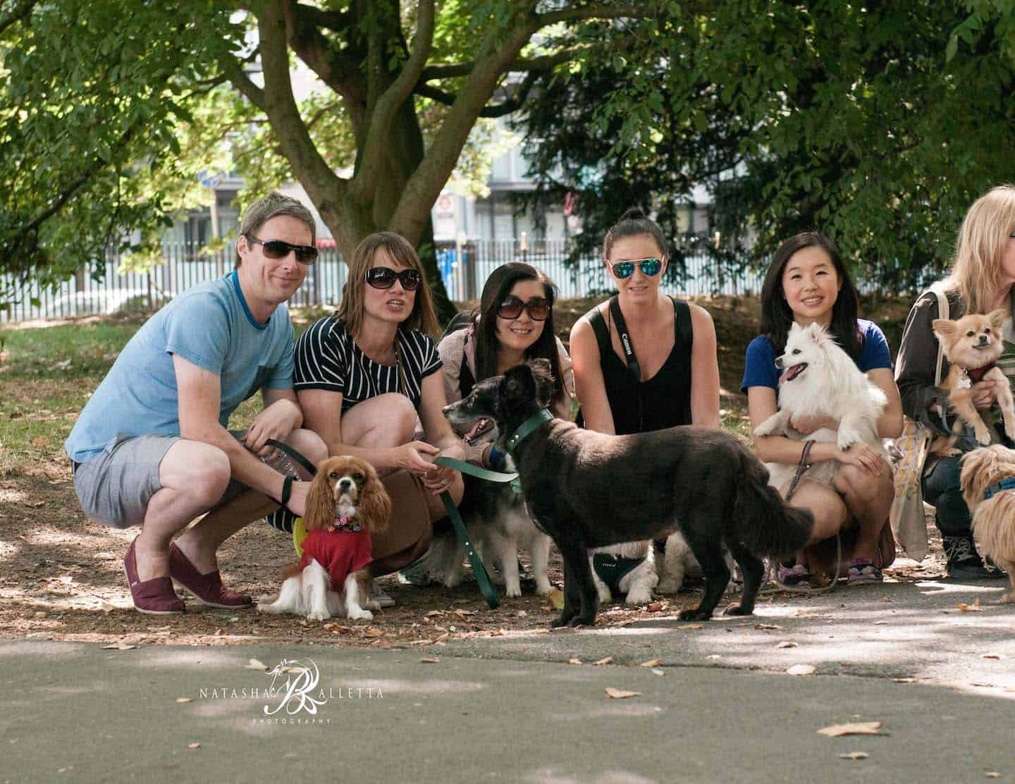 London Dogs Get Social at the London Dogs of Instagram Meetup 1