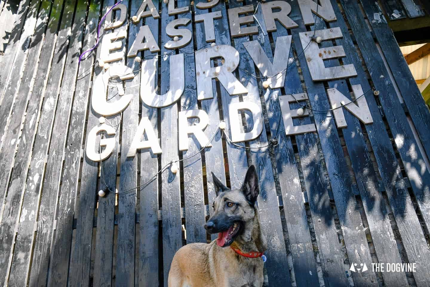 My Dog Friendly London By Lyra the Malinois - Dog Friendly Dalston and Hackney 13