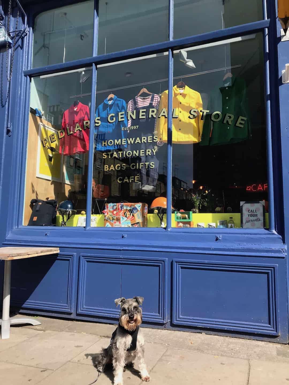 My Dog Friendly London By Pepper Chung the Schnauzer - Dog Friendly Notting Hill 16