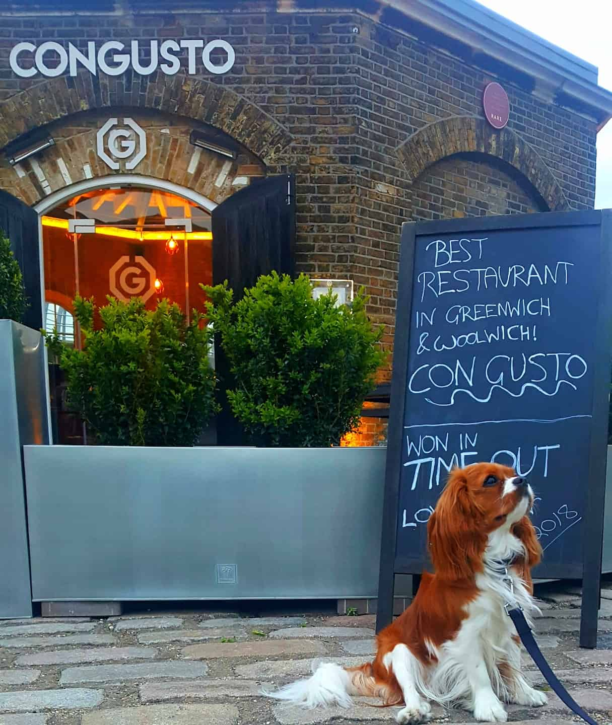 My Dog Friendly London by Amber The Cav - Con Gusto