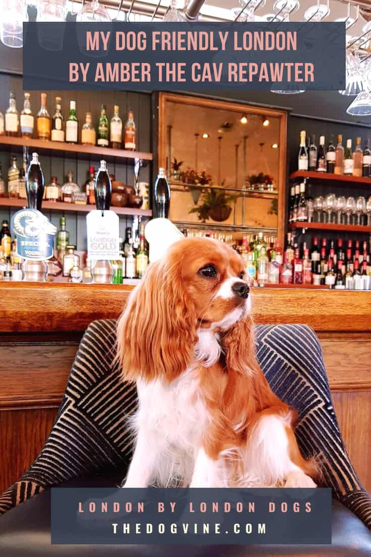 My Dog Friendly London by Amber the Cav Repawter - Cover Image