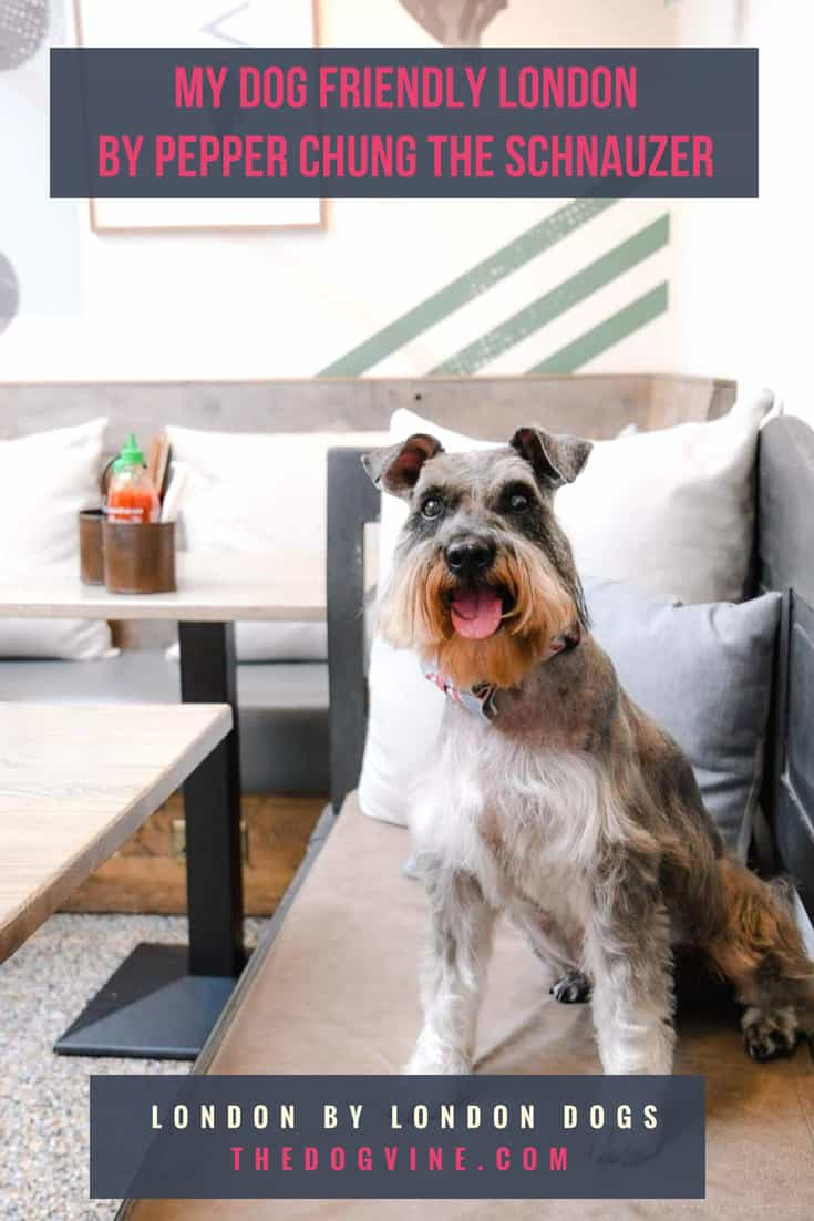 My Dog Friendly London by Pepper Chung - Cover (1)