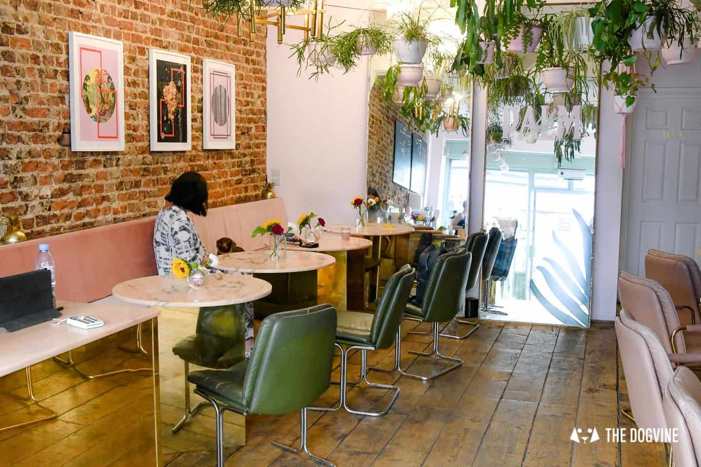 My Dog Friendly London by Pops the Sausage - Palm Vaults