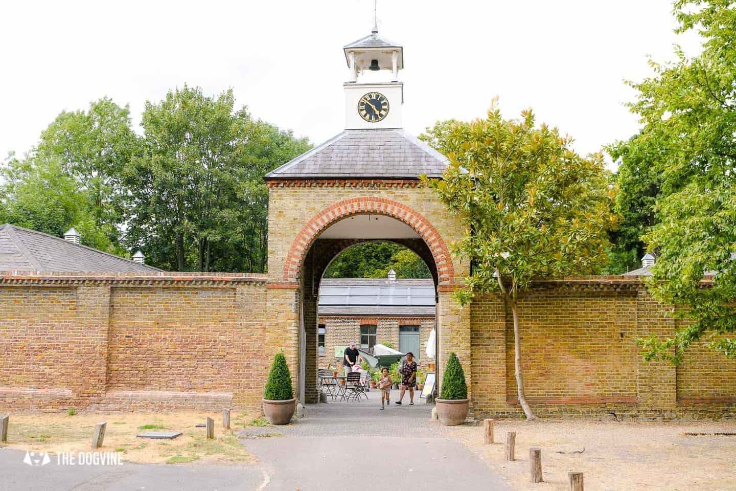 A Dogs Day Out to Dog-Friendly Morden Hall Park 13