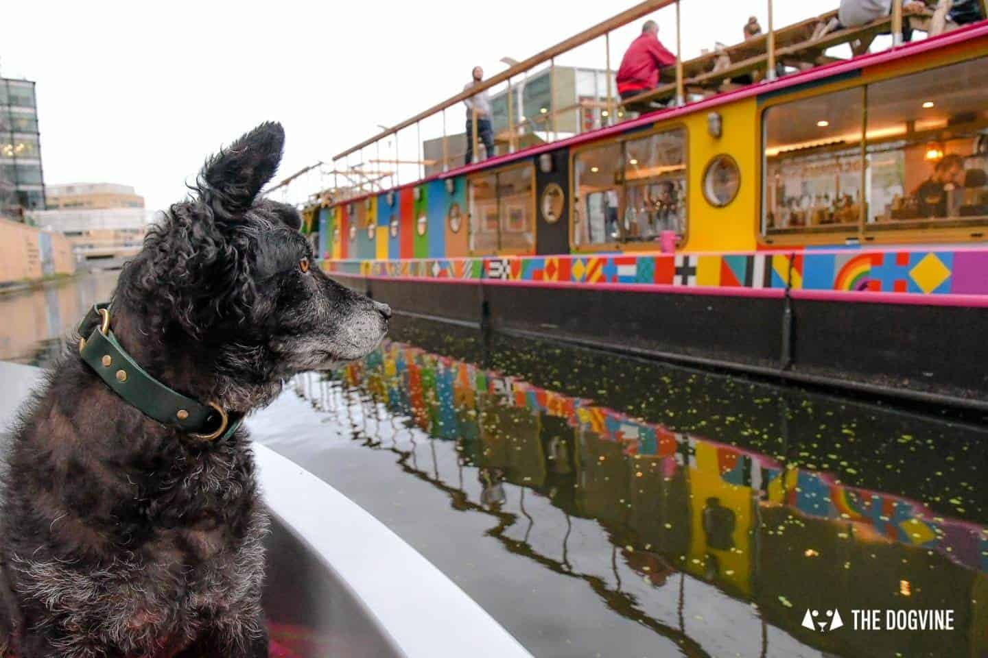 Dog-friendly Go Boat London Experience Regents Canal 70