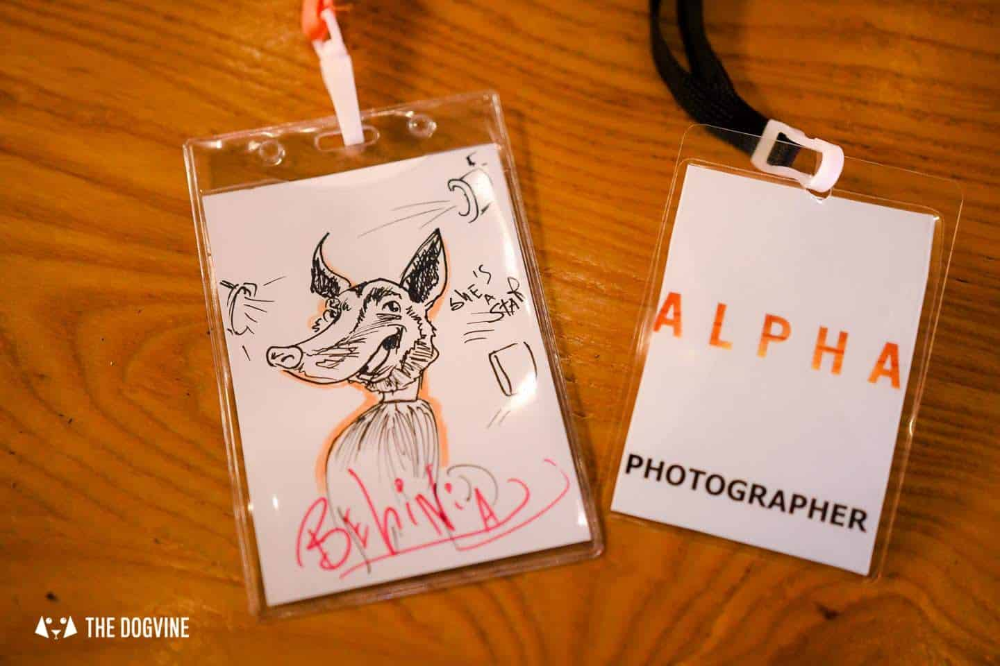 London Dogs At The Alpha Film Gala At Picturehouse Central 14