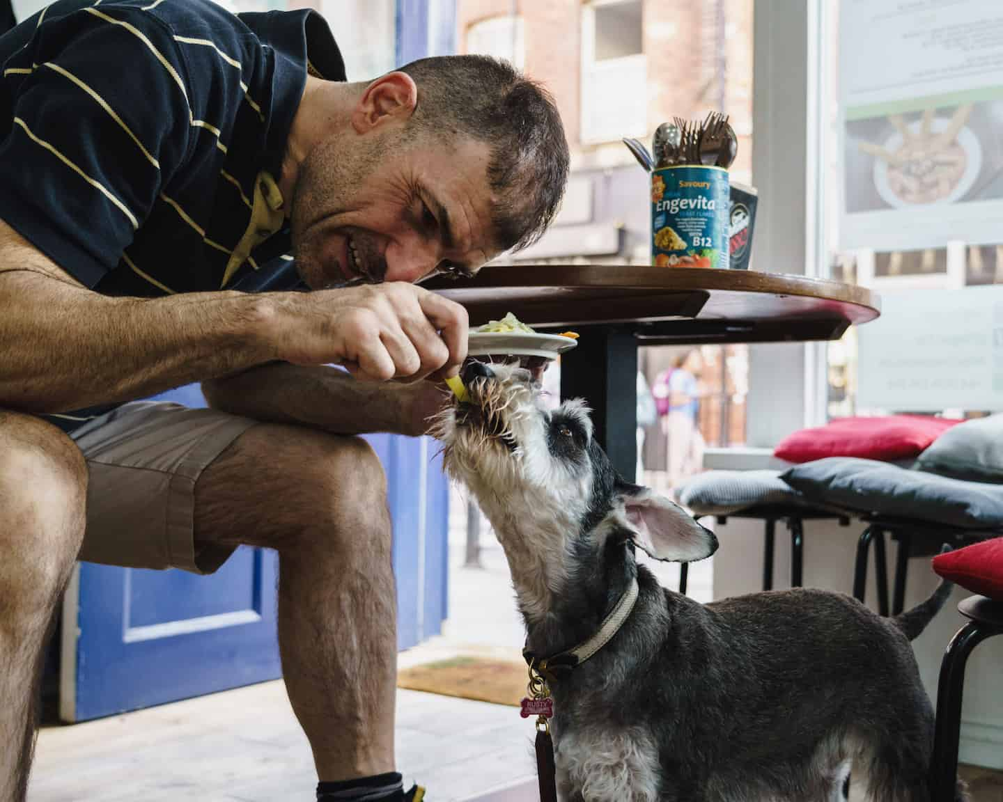 My Dog Friendly London By Rusty Red The Schnauzer | Dog Friendly Shoreditch and Hoxton Vegan Yes 1