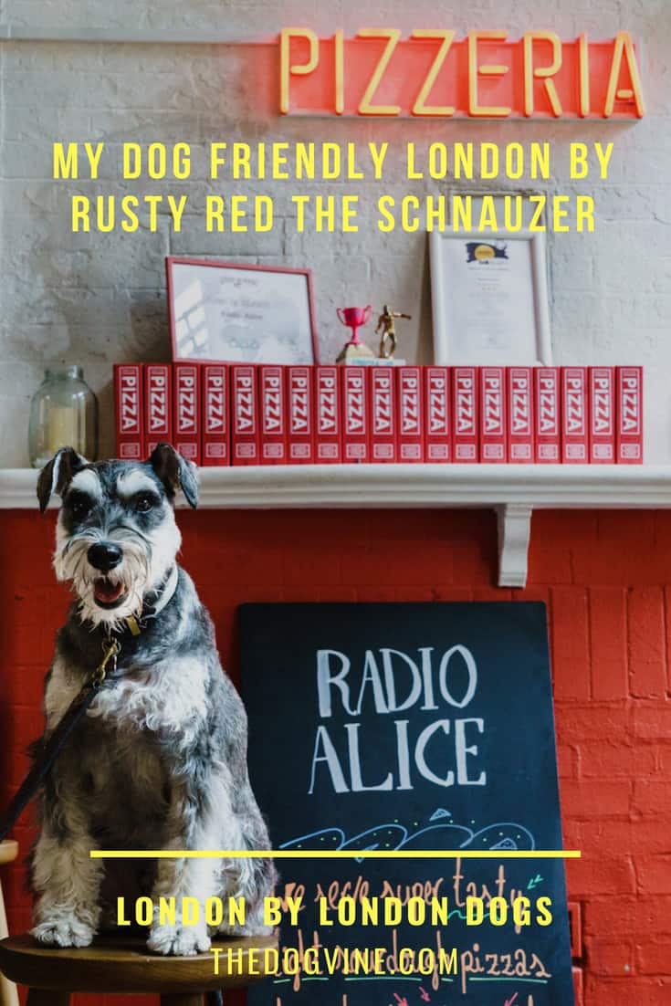 My Dog Friendly London By Rusty Red The Schnauzer _ Dog Friendly Shoreditch and Hoxton - Cover Image