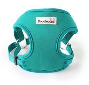 NEOFLEX HARNESS – TEAL