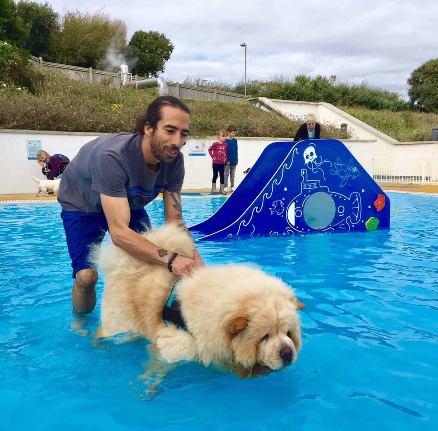 Swim With Your Dog At The Saltdean Lido Dog Swim 2018 -7