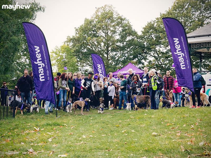 The Great Rescue Ramble 2018