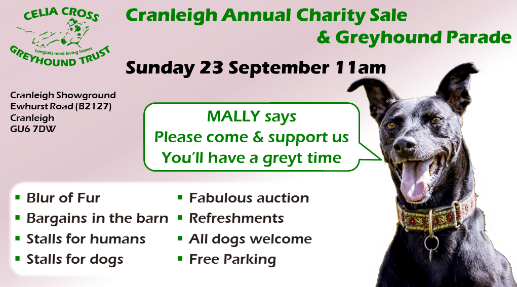 Celia Cross Greyhound Trust Charity Sale & Greyhound Parade 2018