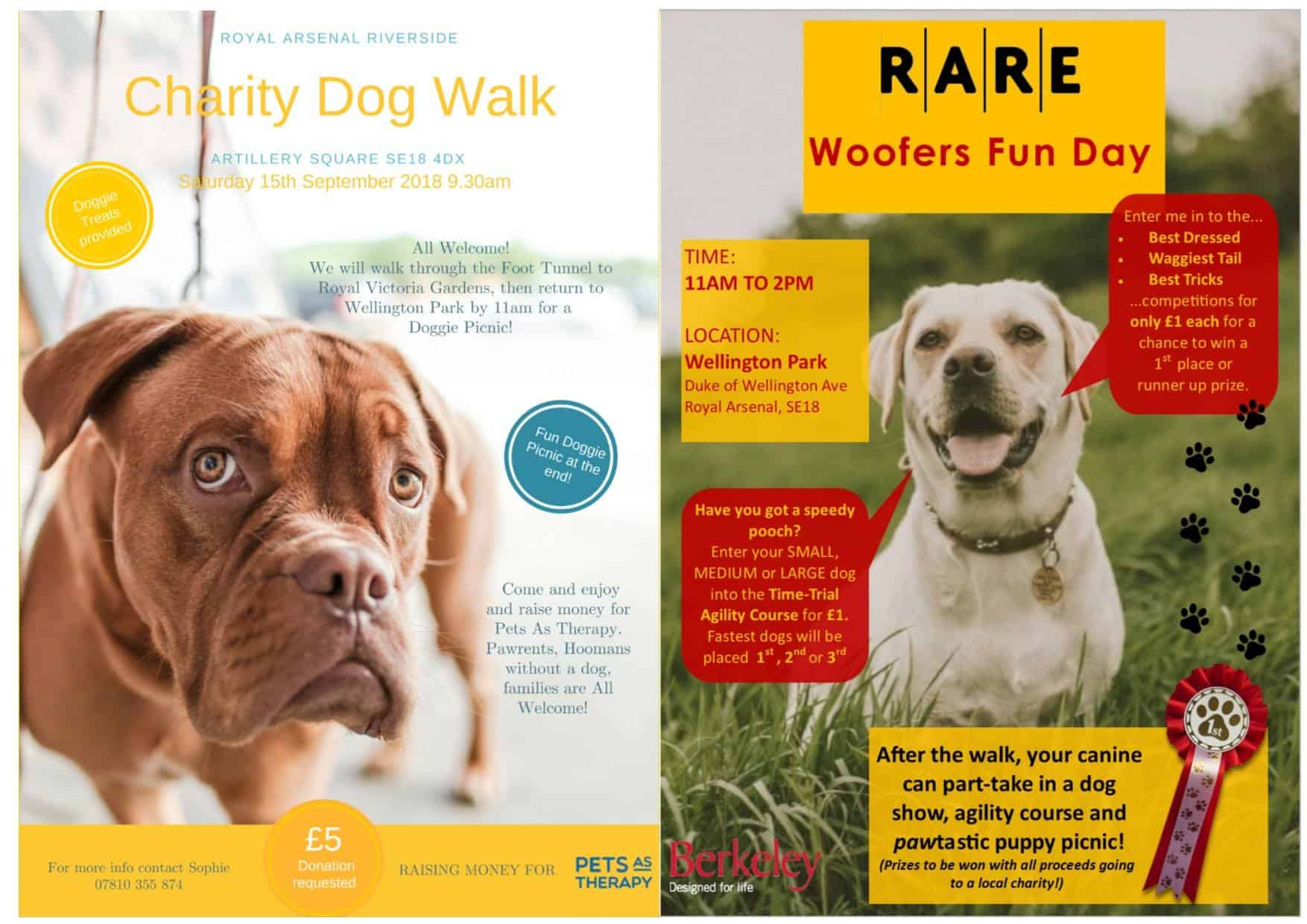Charity Dog Walk For Pets As Therapy and RARE Woofers Fun Day