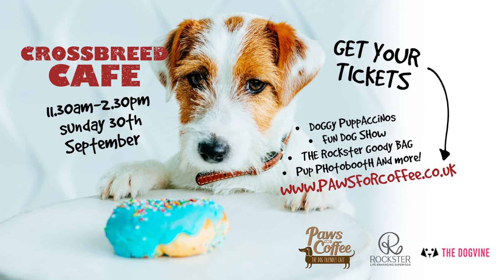 London Dog Events - The Crossbreed Cafe