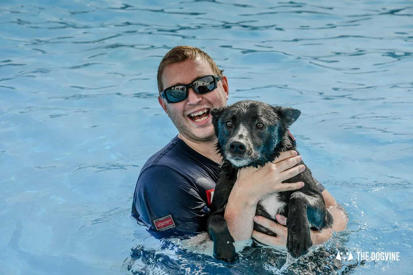Saltdean Lido Dog Swim | A Fabulous Day Out for Dogs 18