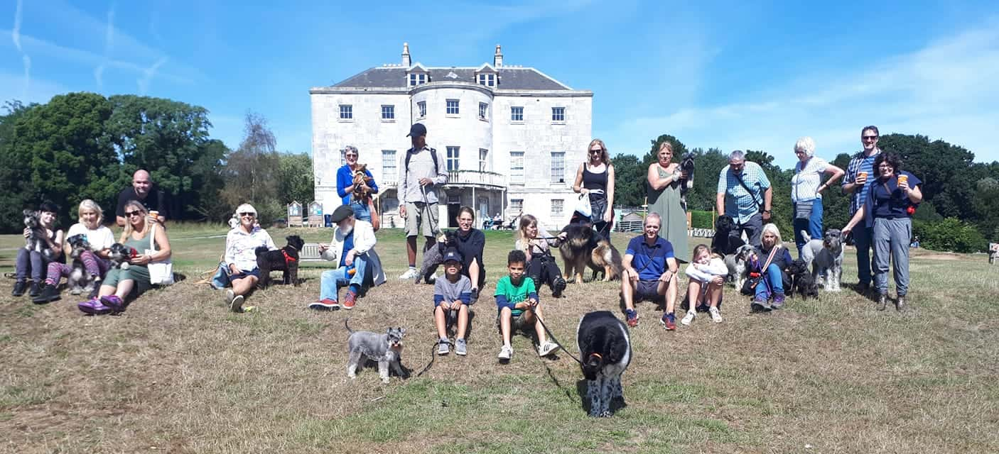 Schnauzers and Friends Walk September 2018
