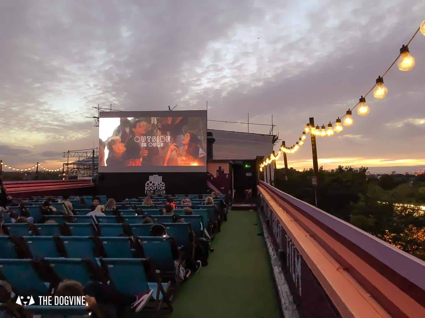 Spectacular Movie Moments at the Dog-friendly Rooftop Film Club 52