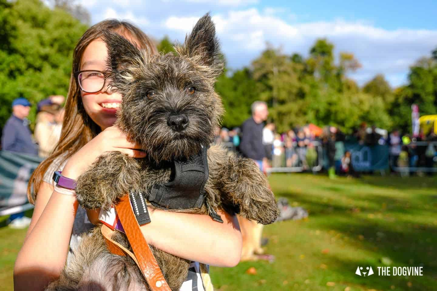 The Chiswick House Dog Show Best in Show 2