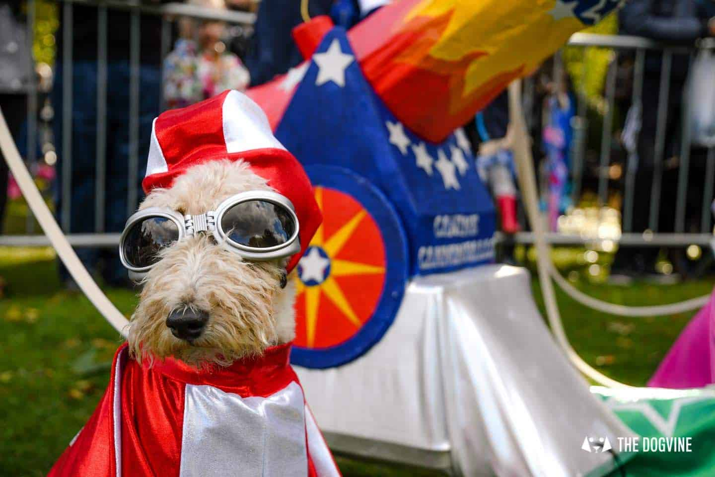 The Chiswick House Dog Show Fancy Dress 12
