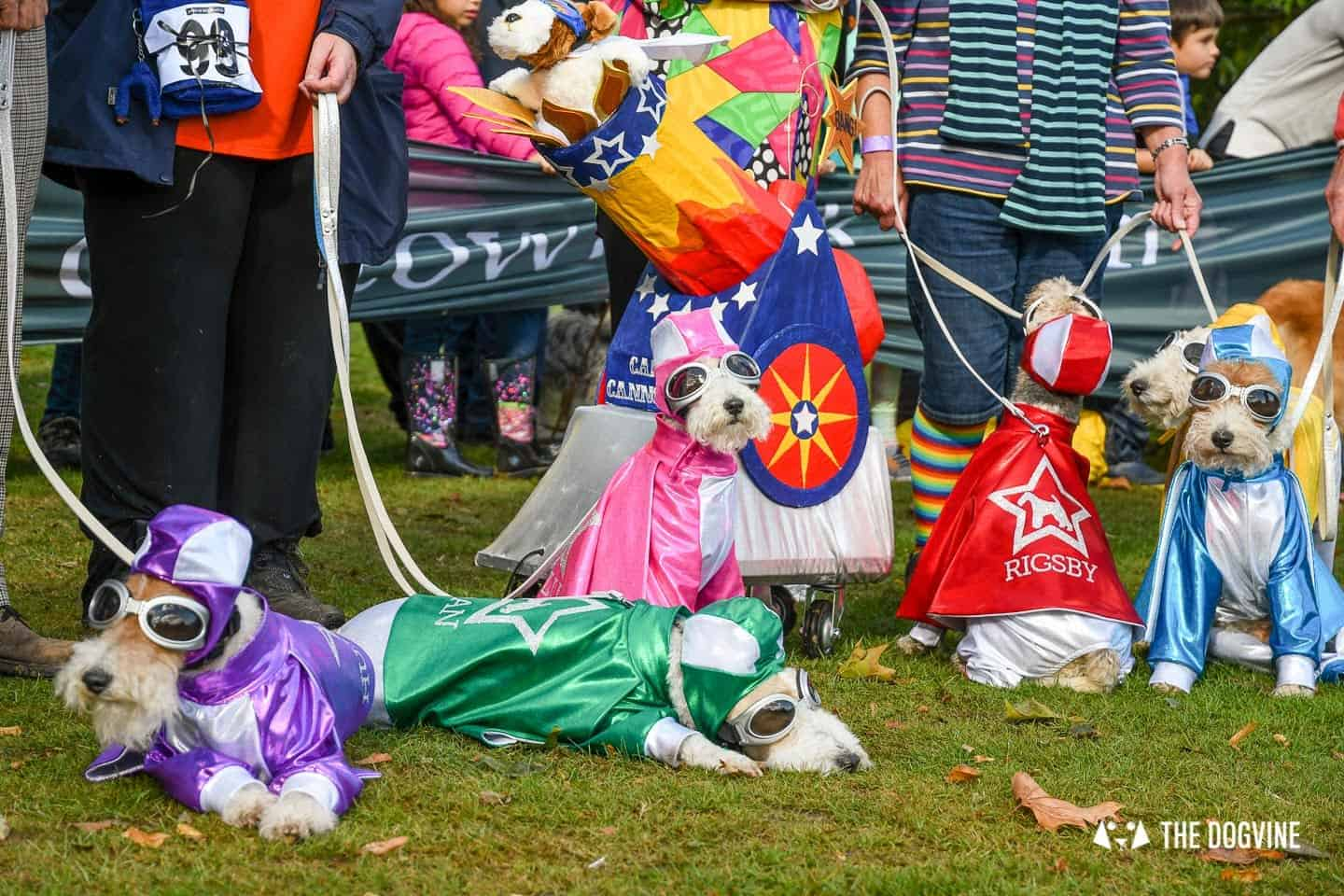 The Chiswick House Dog Show Fancy Dress 8