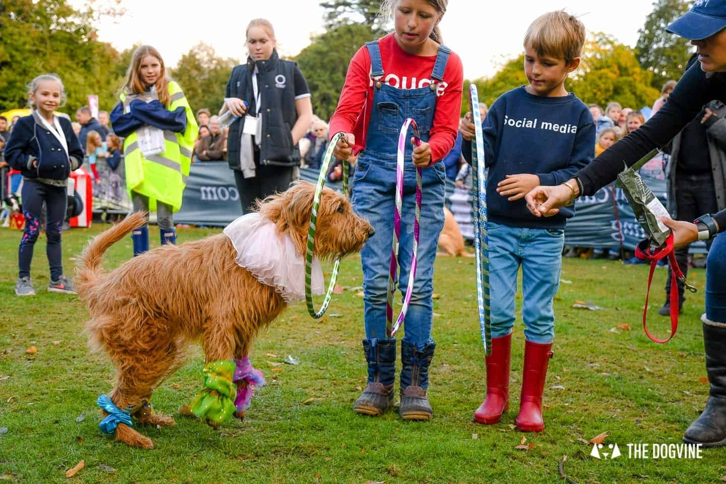 The Chiswick House Dog Show My Dog's Got Talent 1