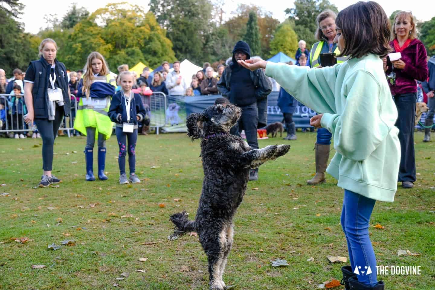 The Chiswick House Dog Show My Dog's Got Talent 10