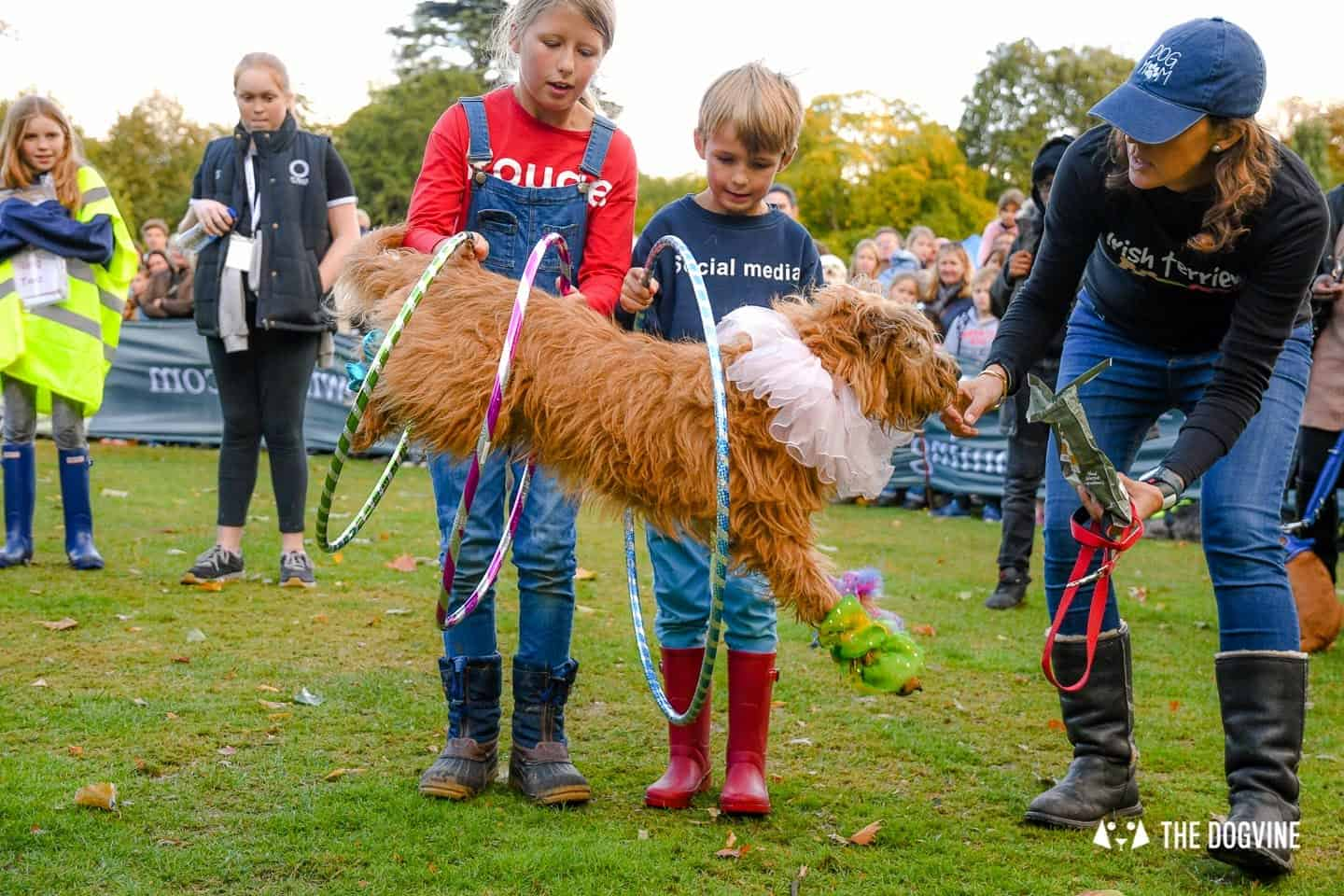 The Chiswick House Dog Show My Dog's Got Talent 2